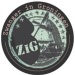 zwanger in groningen logo