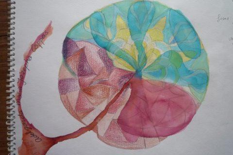 De geboorte van de placenta | column van Gonny